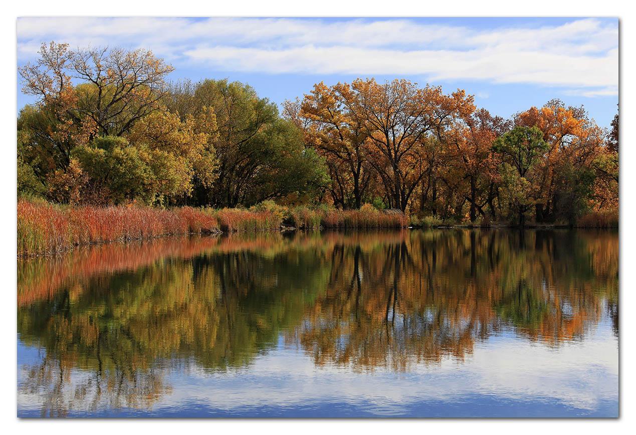 2010-10-24_0043w, Clear Creek_DxO